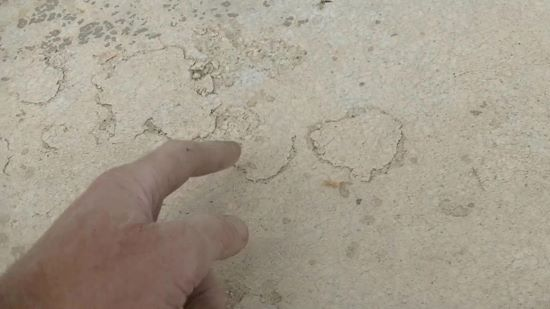 How to repair salt damaged concrete